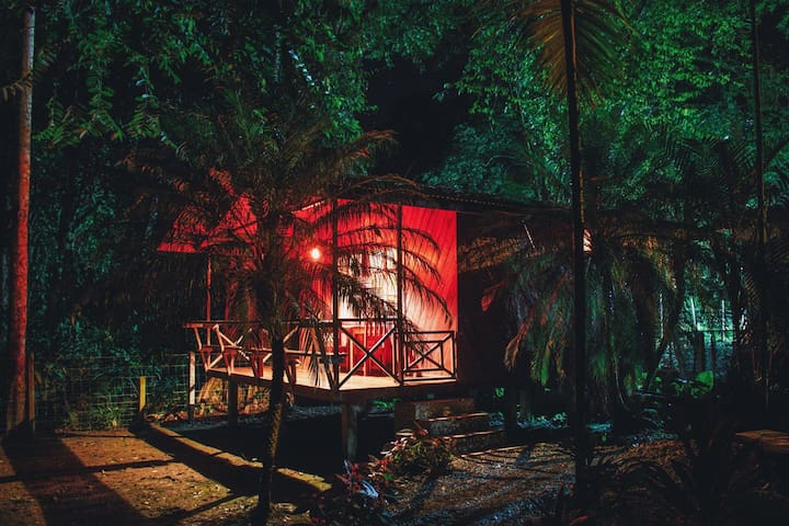 Your cabin at night.