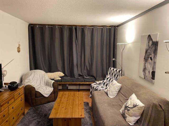 Studio 29 m2 front de neige Isola 2000