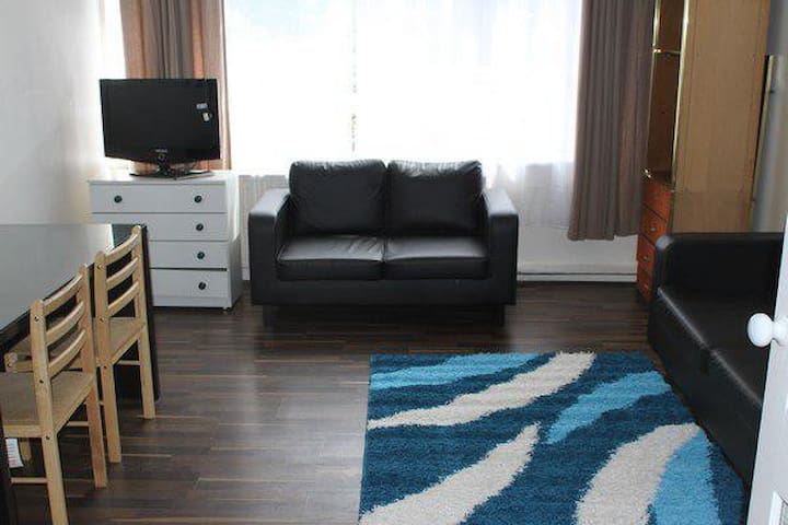 Large Spacious 2 Bedroom Flat by Oxford Street