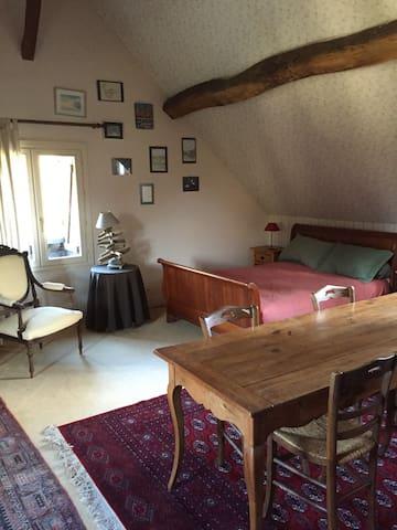 Grande chambre lumineuse dans jolie propriété - Monnaie - Guesthouse