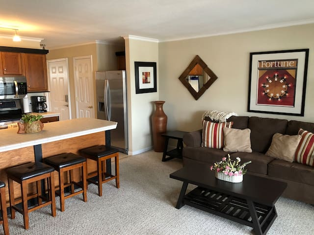 Cozy Condo - Awesome Lakefront View - No Steps!