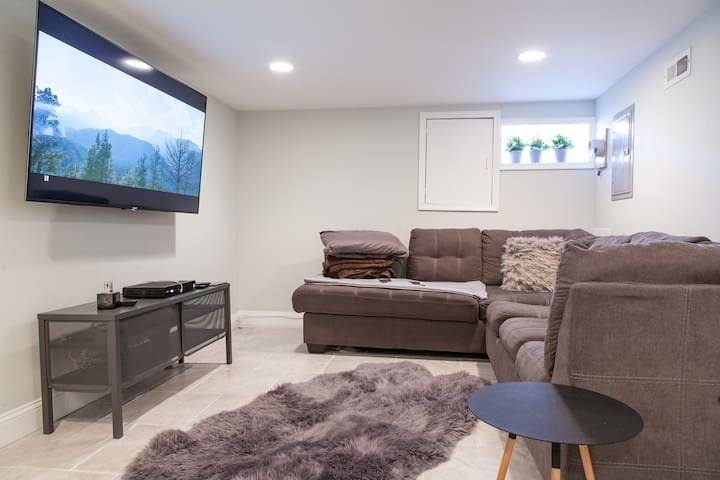 Basement (Queen sofabed)