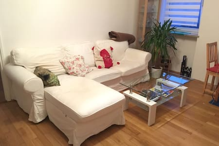 2 room, 50 qm, 3 min to U2 - München - Apartment
