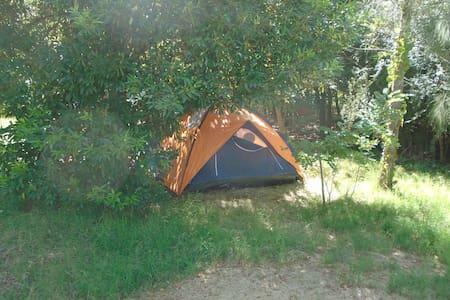 Espacio Cultural , Camping Marindia - Tenda de campanya