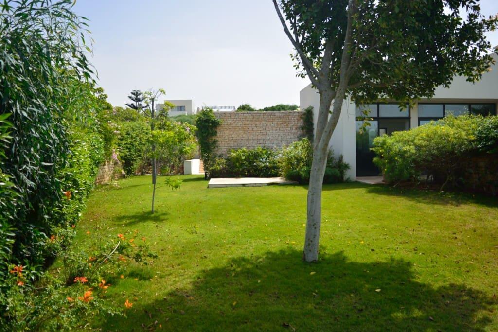 Le jardin coté cuisine