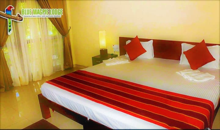 Room close to sinharaja - 20% off next booking