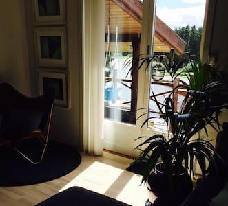 Usjenert,sosial hytte, ved vannet, 50 min fra Oslo - Chalet