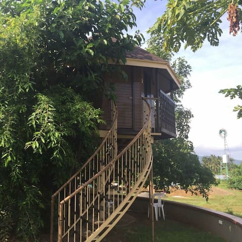 Experience Farm Life on TreeHouse - Batangas - Bed & Breakfast