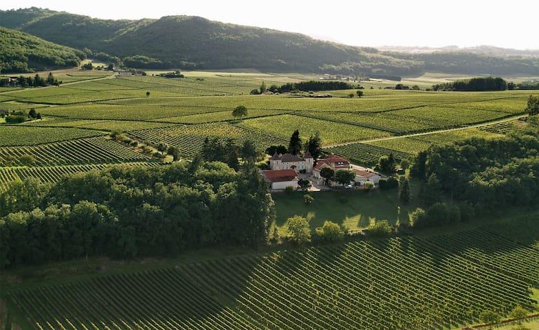 Appartement entier dans le vignoble de Cahors