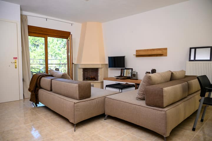 Olympus Mel΄s apartments _Μεζονέτα ΝΜ