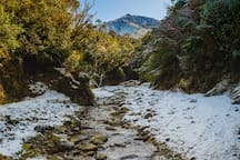 Take a stroll along the Kowhai stream - here it sits after snowfall