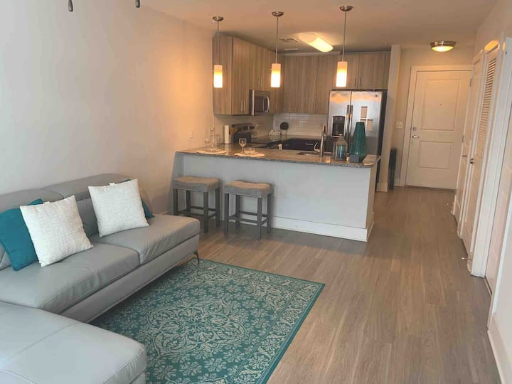 Luxury apartment near perimeter & Lenox mall