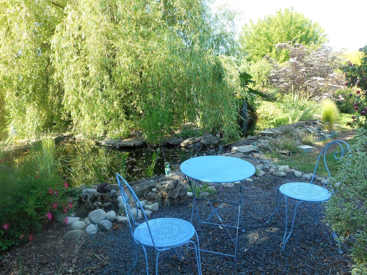 jardin avec bassin à poisson