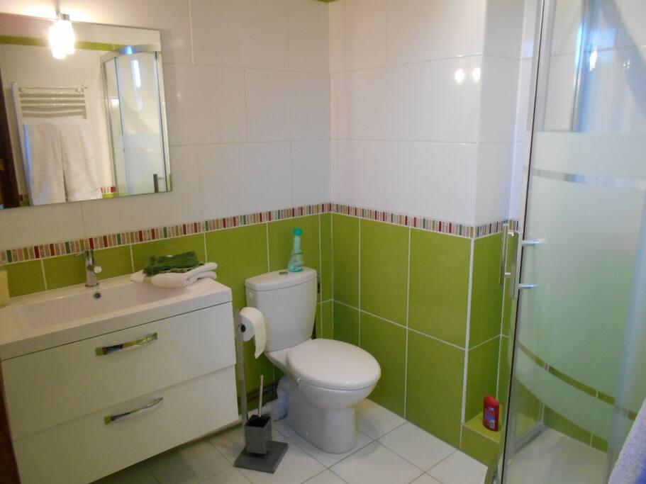 Chambre verte avec salle de bain houses for rent in for Salle de bain translation