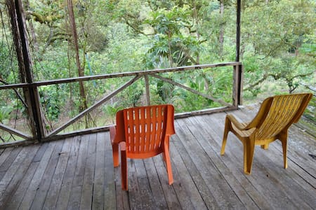 Cabin in 10-acres of Greenery