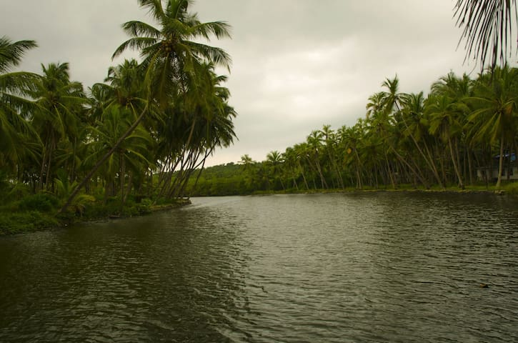 lagoon view from homestay