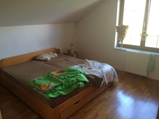 Hezký pokoj v domě blízko Roudnice nad Labem - Bechlín - Hus