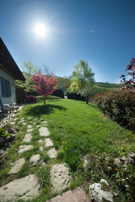 facciata esterna e giardino