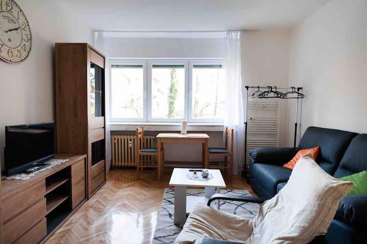 Studio apartman Zeleni trg