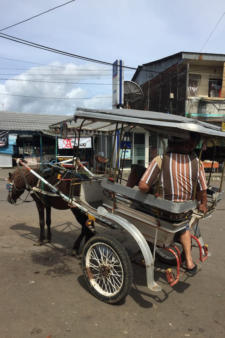 One of very few horse-carts