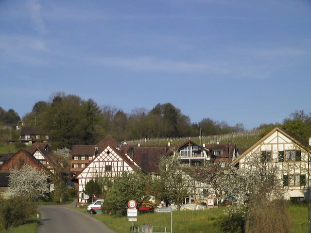 Inmitten Idyllik, Wein & Rhein