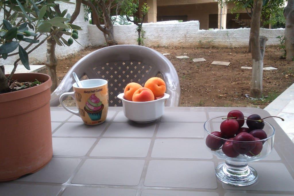 Πρωινό στον κήπο. Breakfast in the garden.