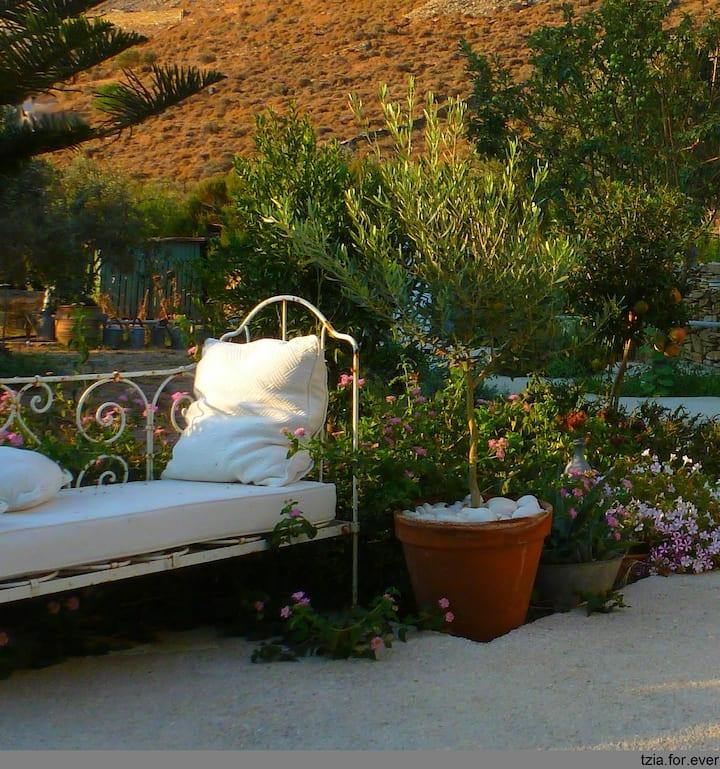 Vacances a la ferme ''La Maison Vert Amande''