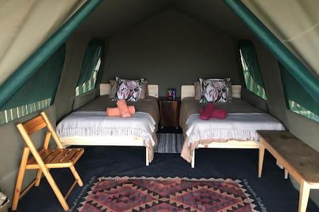 Luxury Tent 1 Camp Vogelsang Omaruru