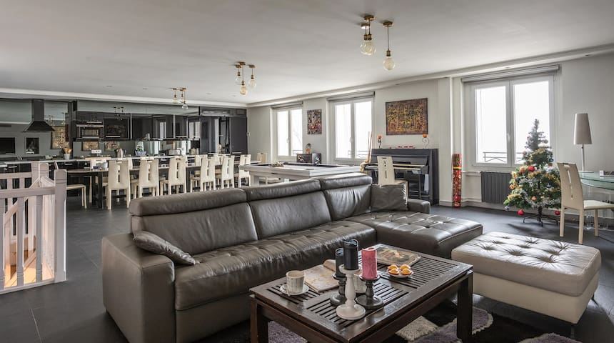 Luxury Apartment with Seine and Notre-Dame view