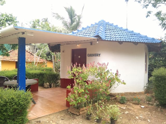 TT Dynasty Home Cottage 3 @ Virajpet