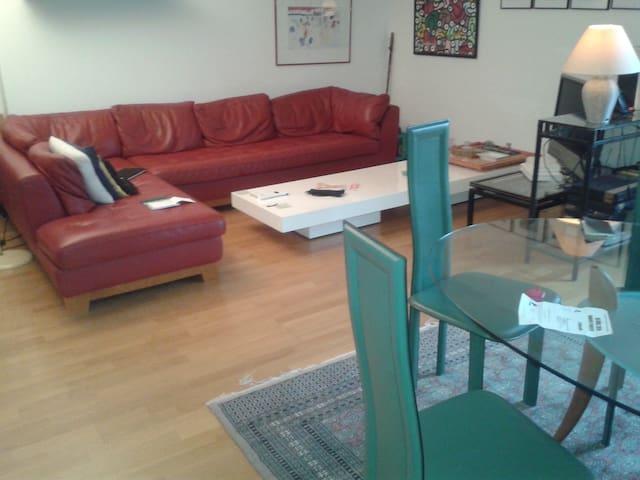 1 chambre au calme ds appartement du centre ville - Châteauroux - Appartement