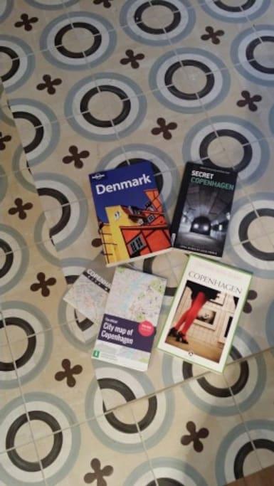 few books to navigate in copenhagen