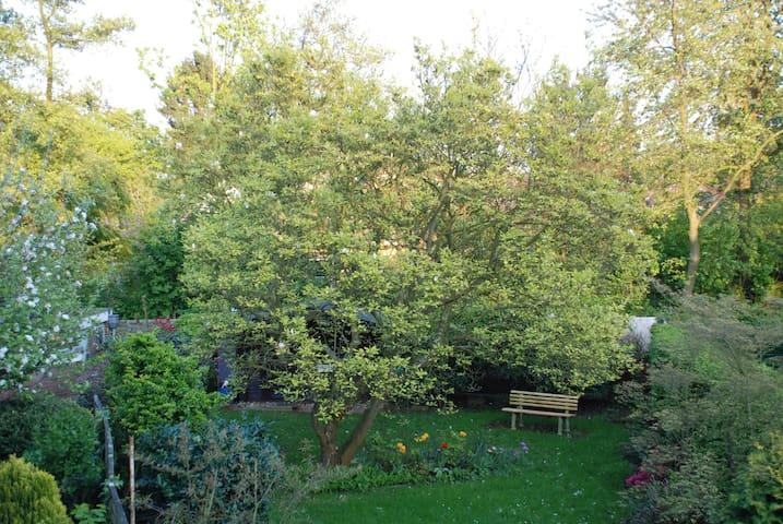 Gemütliche großeWohnung mit Gartenblick und Balkon