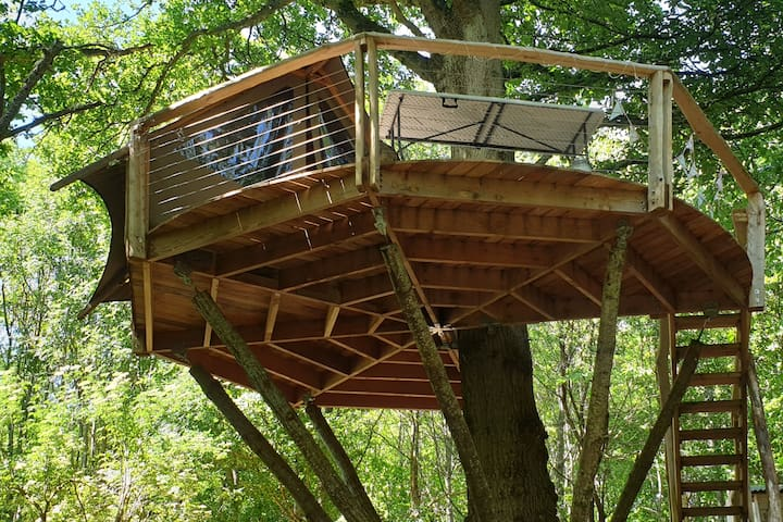 Undercover woodland treehouse West Sussex
