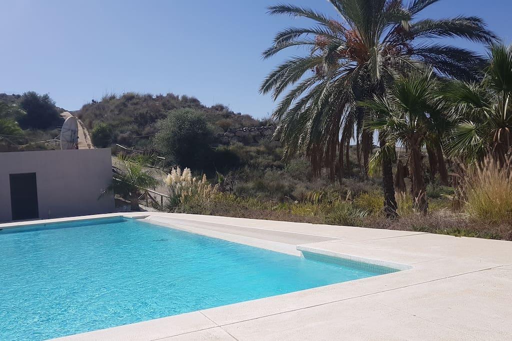 www.casa-nimajas.com