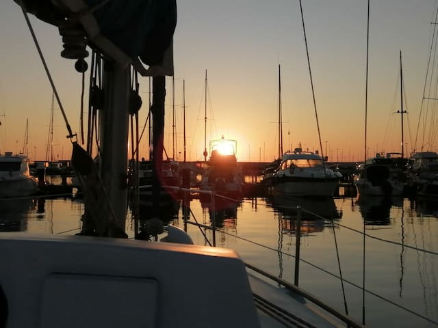 Velero en la Marina de Valencia