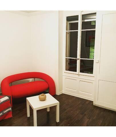New spacious apartment Geneva city center