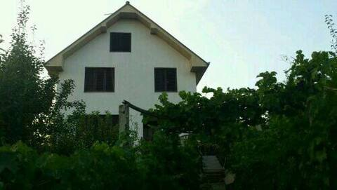 Cozy nice house in Smdvska Palanka that you'd Love