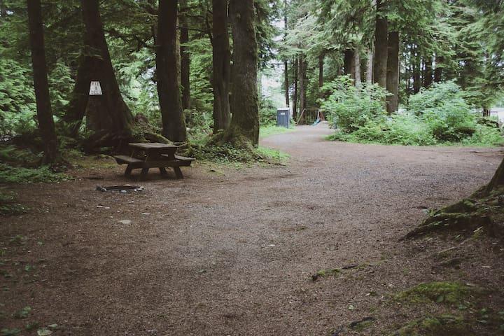 Campsite #18 ·  Forest Campsite