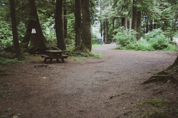 Forest Campsite #18