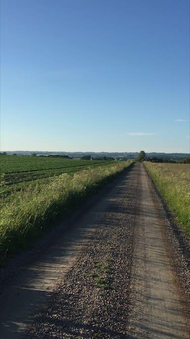 Grusvägen fram till boendet