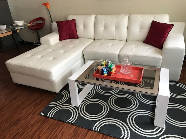 Large 2 BR Unit w/ free Cable, NETFLIX & fast Wifi