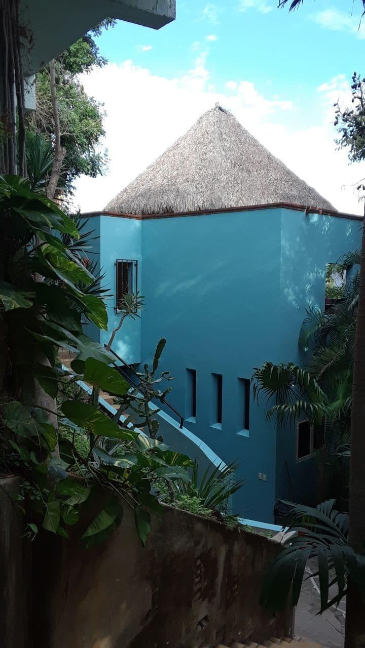 Casa Escondida-  a bird watchers paradise