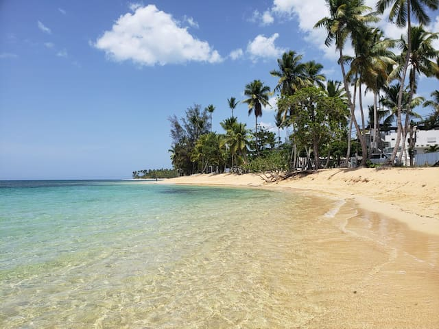 Clear waters of Playa Punta Popy