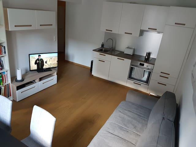 New city center apartment - Viyana - Daire