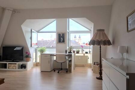 Schönes Zimmer im Herzen von Bayreuth - Bayreuth