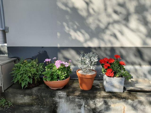 벽화마을,독채,지하철,모임,카페ㅡA pretty house in a muralvillage