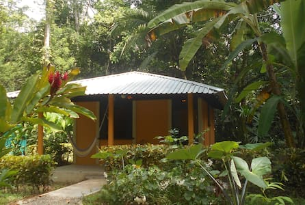 Cabina Mandarina, In the Jungle near the Sea - Cahuita