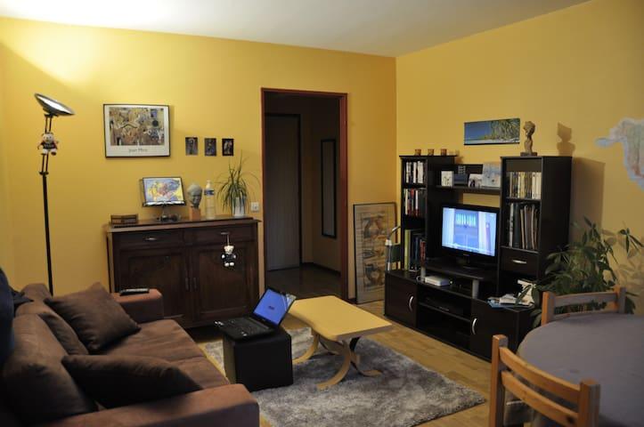 logement agréable - Olivet - Appartement