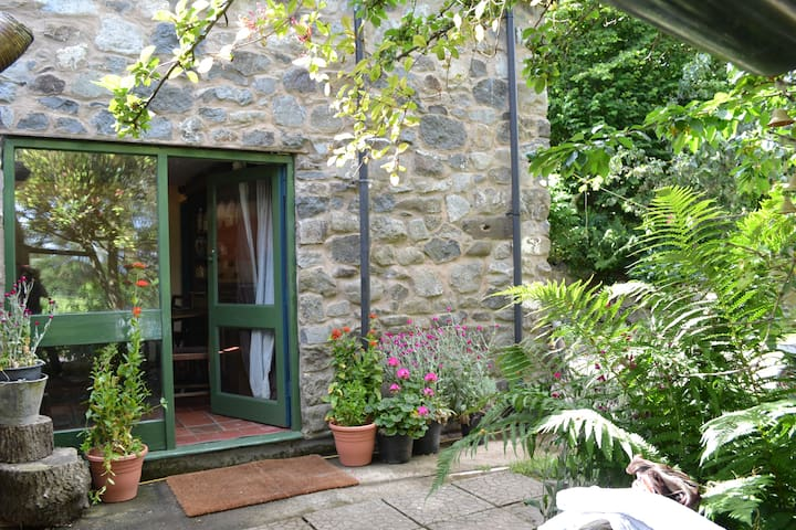 Secluded hill side cottage 5 min from Llanrhaeadr.